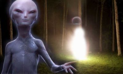 "The MUFON World UFO Center receives a strange report from an ""Extraterrestrial Entity"" 96"