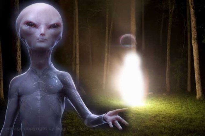 "The MUFON World UFO Center receives a strange report from an ""Extraterrestrial Entity"" 20"