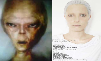 The Pentagon would have allowed the release of a video in which a US Army Soldier talks about various Alien races! 97