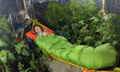 Can plants keep you alive in an airtight room? 89