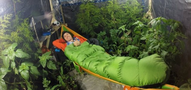 Can plants keep you alive in an airtight room? 10
