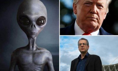 Donald Trump may have launched US Space Force army after learning about America's UFO secrets, expert claims 87