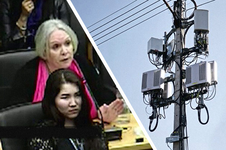 UN Staffer Warns that 5G is a 'War on Humanity' 88