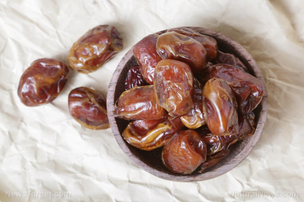 The Date Palm Found to Increase Sperm Count and Motility 3