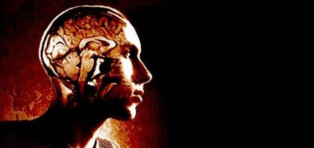 The human brain retrieves memories backwards 14