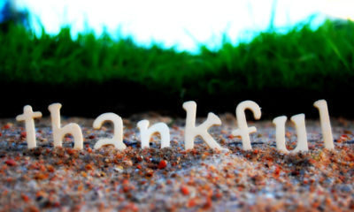Scientists Show How Gratitude Literally Alters The Human Heart & Molecular Structure Of The Brain 93