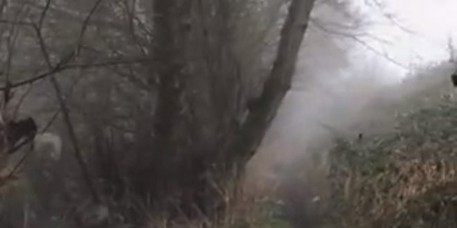 Ghost caught on camera at eerie footpath in Essex, UK 86