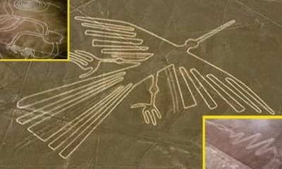 Maybe Nazca Lines Are Alien Artifacts From Ancient Times 87