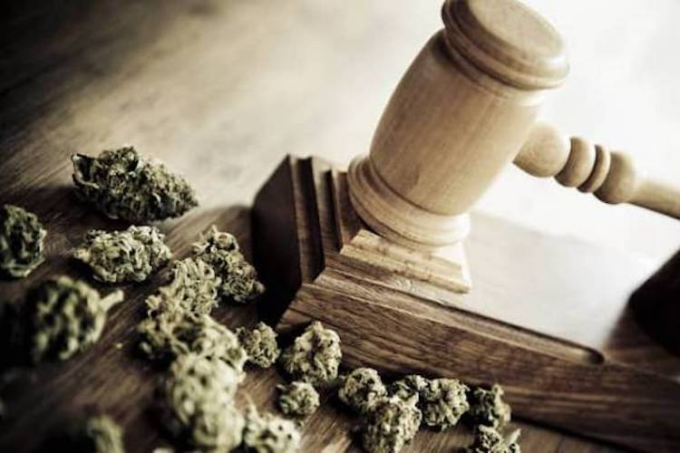 Los Angeles and Chicago Are Readying to Erase 68,000 Nonviolent Marijuana Convictions 86