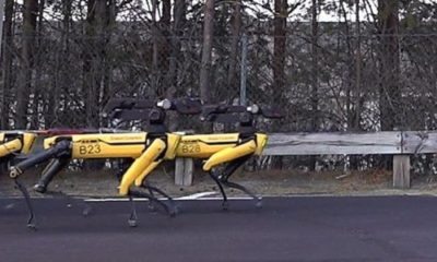 10 robotic dogs pull truck along in new video 87