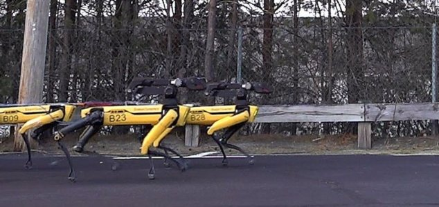 10 robotic dogs pull truck along in new video 8