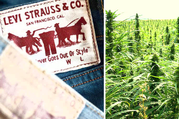 Levi's is Using Hemp in Their New Line of Sustainable Clothing 86