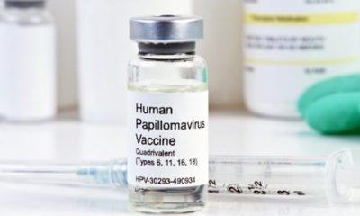 25 Reasons to Avoid the Gardasil Vaccine 96