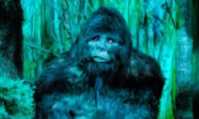 Man tells cops Bigfoot attacked him with an axe 97