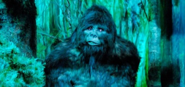 Man tells cops Bigfoot attacked him with an axe 21