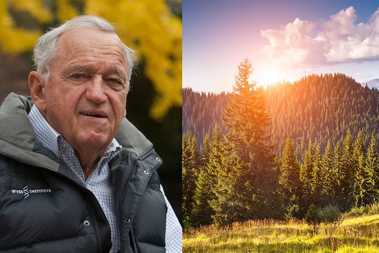 Billionaire Intends to Buy 15% of the Planet to Protect It 86