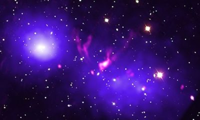 Cluster Merger: Galaxy Clusters Caught in a First Kiss 91