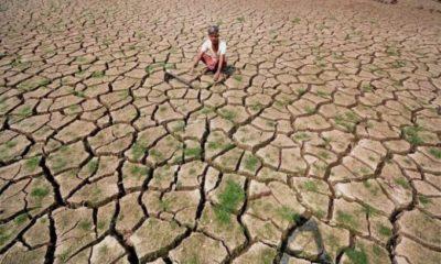 India Facing Drought Nation Wide Drought Crisis 96