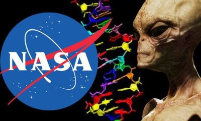 NASA in alien life BREAKTHROUGH after DNA discovery 92