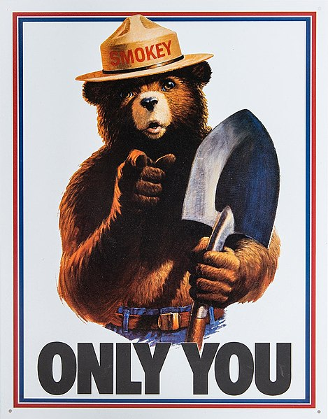Only You, Smokey and Bigfoot Can Prevent Forest Fires 43