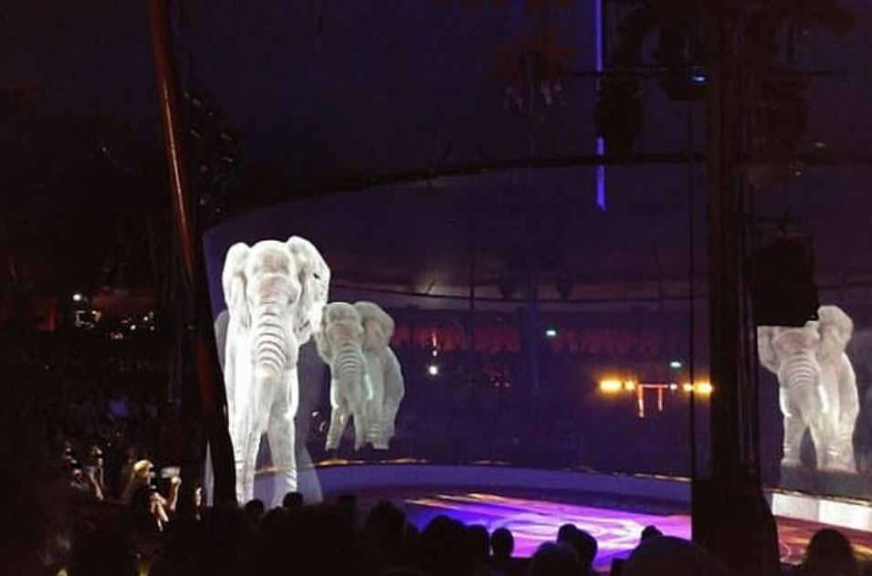 "Circus Uses ""Cruelty Free"" Animal Holograms Instead Of Live Animals 3"
