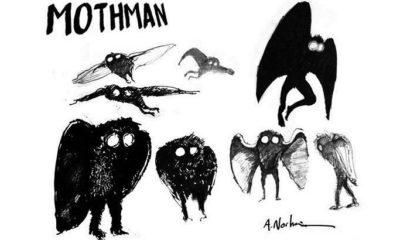 Staff claimed to have seen creepy Mothman-like creature before blast 93