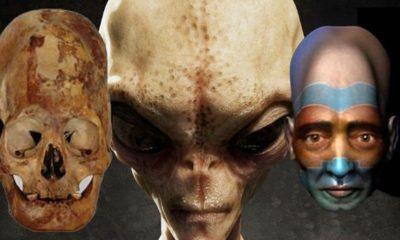 Prehistoric aliens in Malta? Elongated skulls found in an underground temple will be analyzed 95