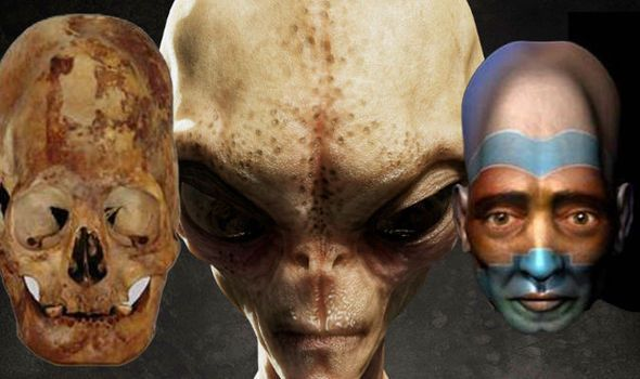 Prehistoric aliens in Malta? Elongated skulls found in an underground temple will be analyzed 86