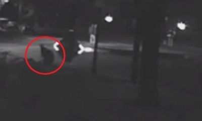 CCTV Footage Captures Mysterious Humanoid Figure Materializing At Night 91