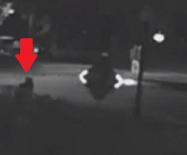 CCTV Footage Captures Mysterious Humanoid Figure Materializing At Night 4