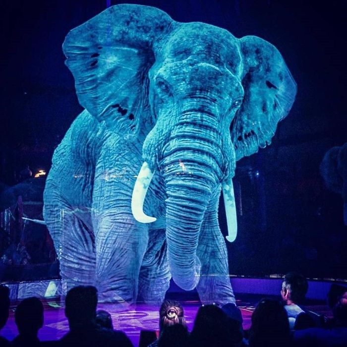 """Circus Uses """"Cruelty Free"""" Animal Holograms Instead Of Live Animals 2"""
