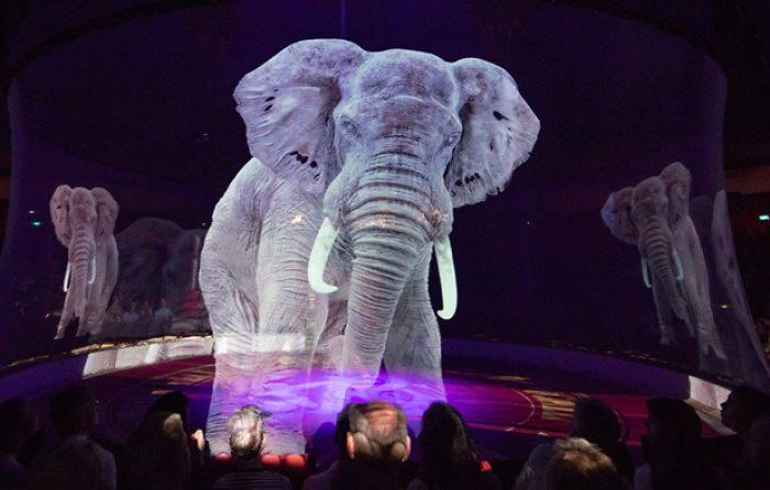 "Circus Uses ""Cruelty Free"" Animal Holograms Instead Of Live Animals 1"