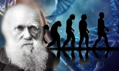 Prominent Yale Professor Explains How Darwin's Theory of Evolution Doesn't Match The Science 89
