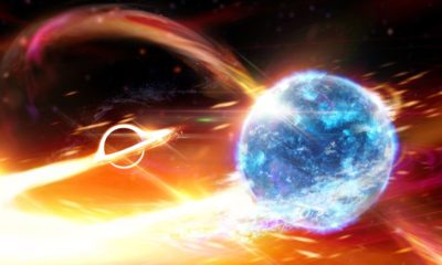 Black hole gobbles up neutron star, causing ripples in space and time 93