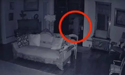 Is this video of a ghost in a white dress the 'Best Ever' footage of a ghost? 91