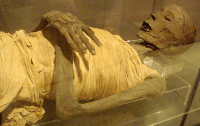 New Study Finds Ancient Mummies Had Modern Diseases 95