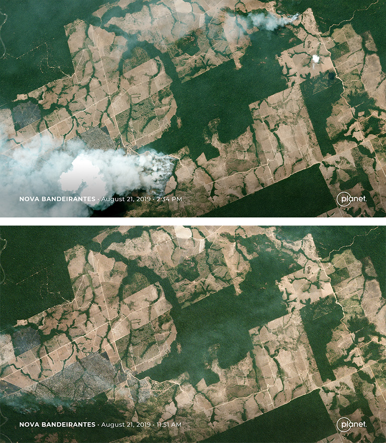Satellite Images Reveal Devastating Amazon Fires in Almost Real-Time 109