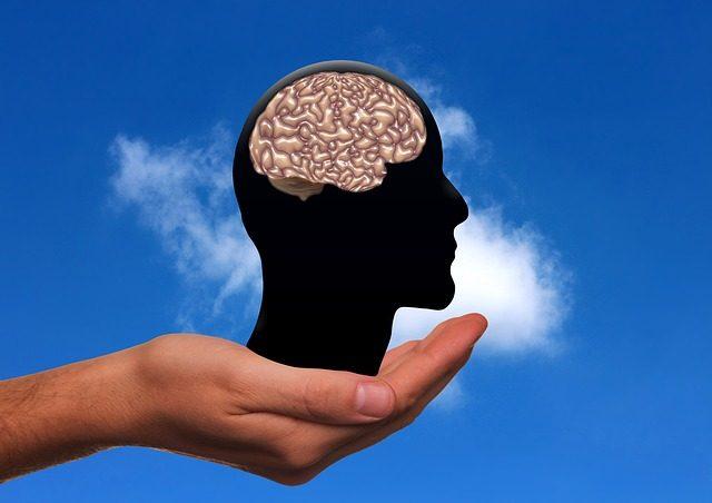 Advanced Brain Waves Detected in Lab-Grown Human Mini-Brains 1