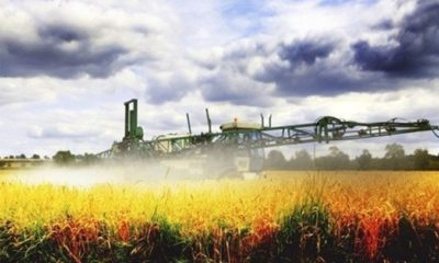 Glyphosate Worse Than We Could Imagine…It's Everywhere 91