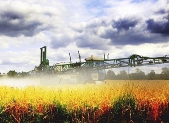 Glyphosate Worse Than We Could Imagine…It's Everywhere 87