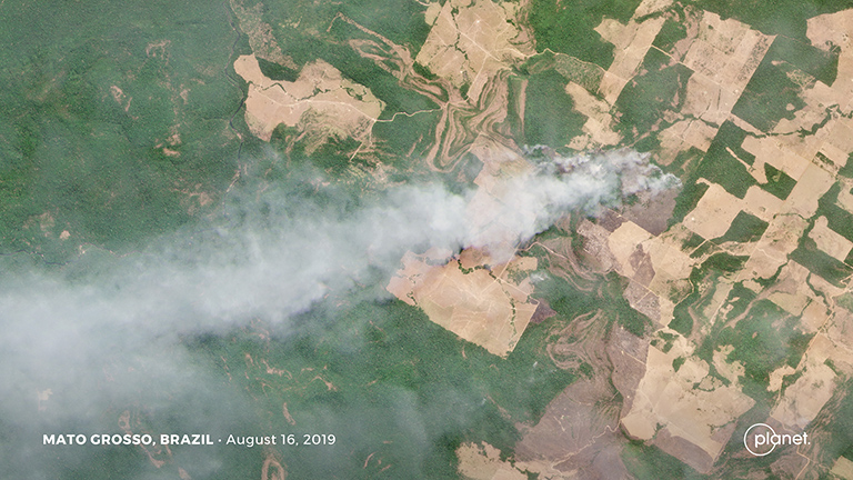 Satellite Images Reveal Devastating Amazon Fires in Almost Real-Time 108