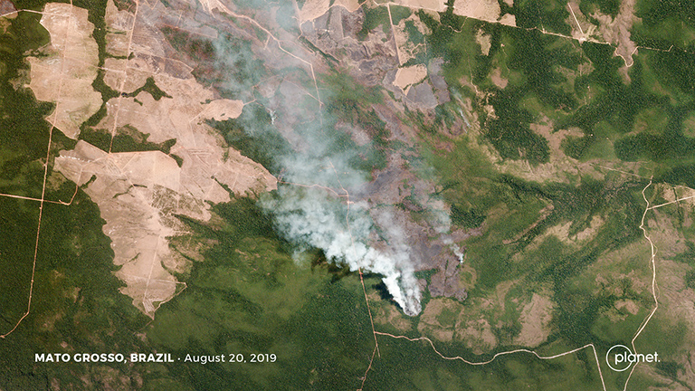 Satellite Images Reveal Devastating Amazon Fires in Almost Real-Time 106