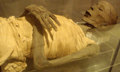 New Study Finds Ancient Mummies Had Modern Diseases 86