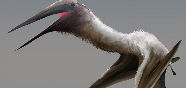 33ft 'frozen dragon' pterosaur found in Canada 1