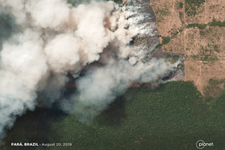 Satellite Images Reveal Devastating Amazon Fires in Almost Real-Time 107