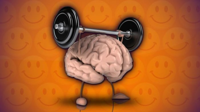 Brain Size May Increase with Exercise, According to Study 1