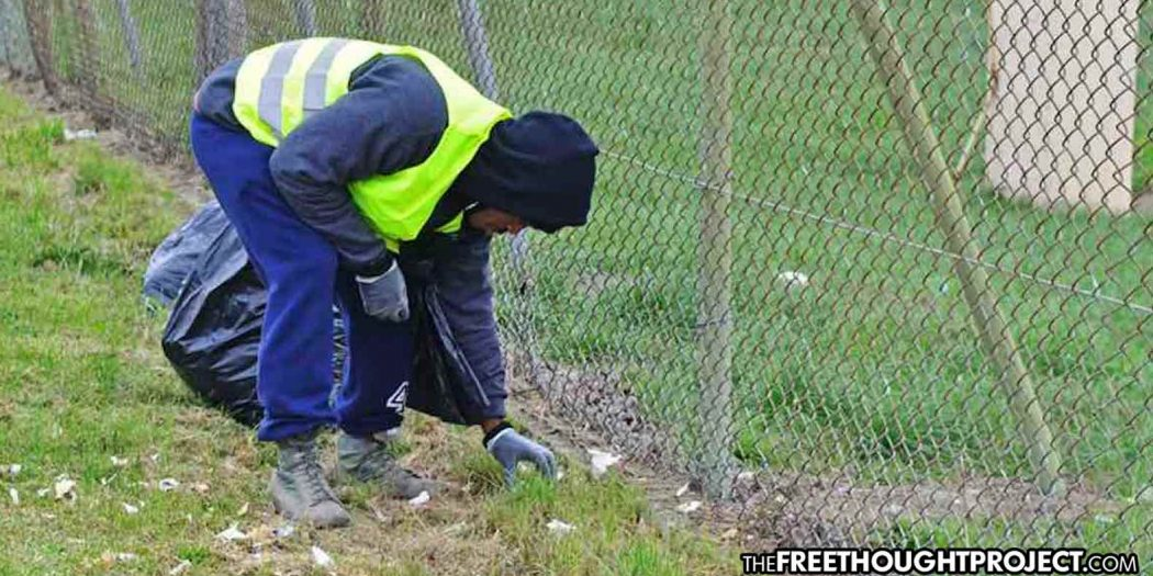 Instead of Arresting the Homeless Population, City Paying Them to Pickup Trash 1