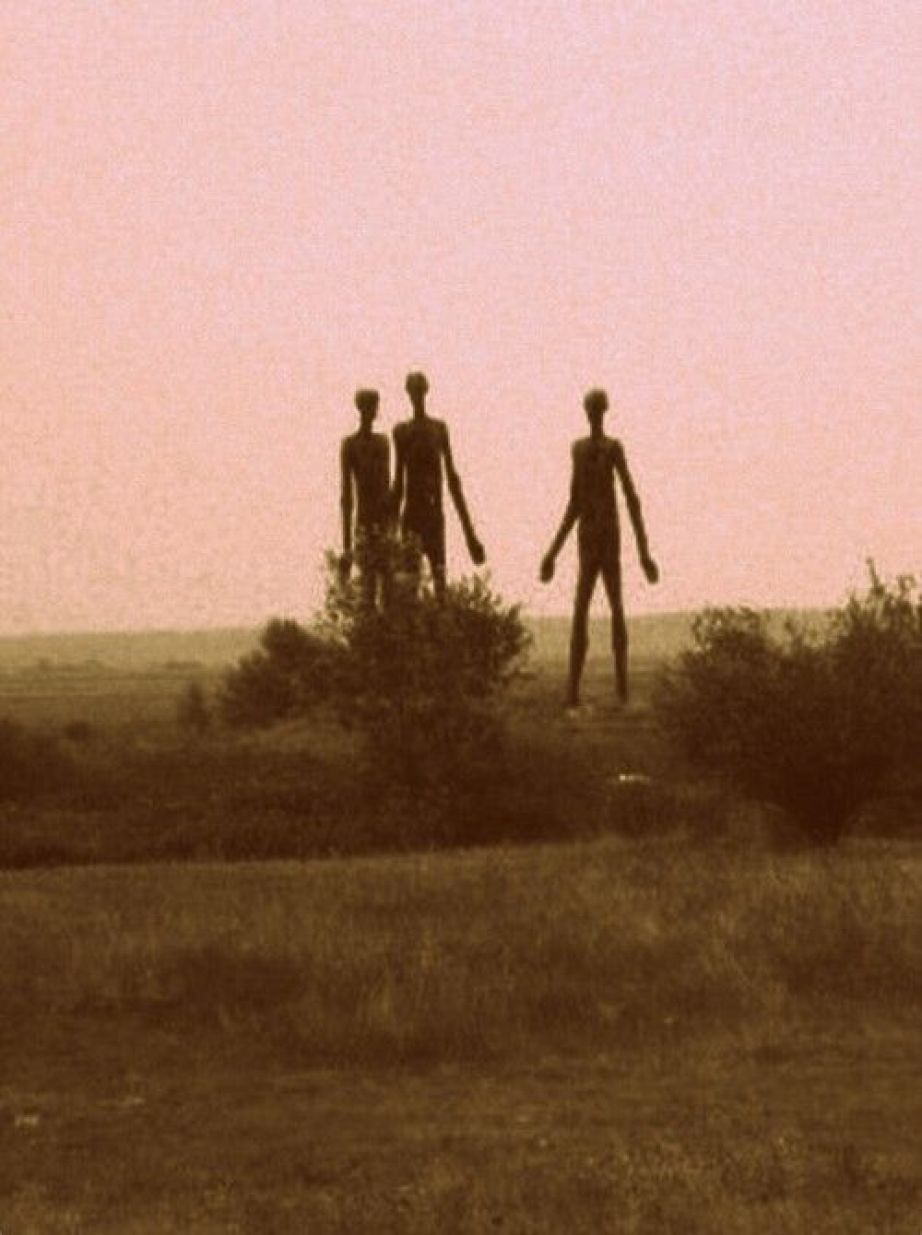 10 Shocking Secrets About The Tall White Aliens Revealed by Charles Hall 22