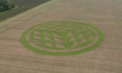 Mysterious Crop Circle Turns Green In Weathered Autumn Field 88