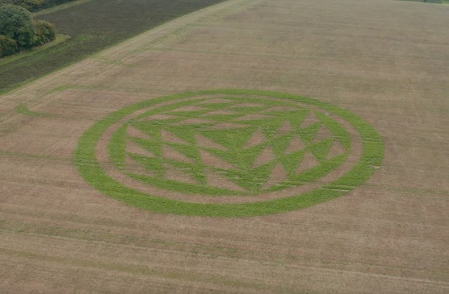 Mysterious Crop Circle Turns Green In Weathered Autumn Field 86